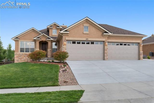 373 Coyote Willow Drive, Colorado Springs, CO 80921 (#5916117) :: The Treasure Davis Team