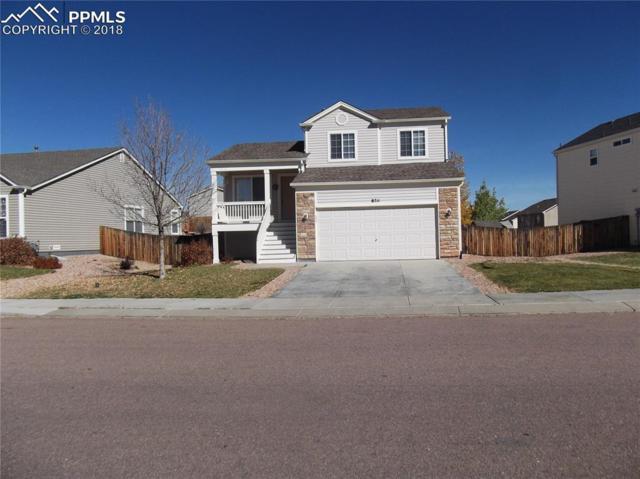 8711 Silver Glen Drive, Fountain, CO 80817 (#5917667) :: Jason Daniels & Associates at RE/MAX Millennium