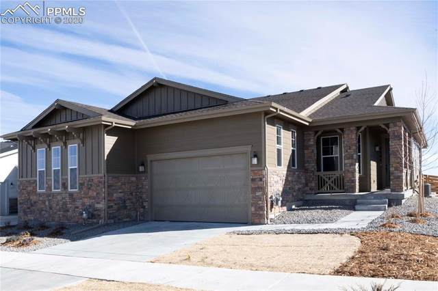 2006 Sagerock Drive, Castle Pines, CO 80108 (#5923291) :: HomeSmart Realty Group