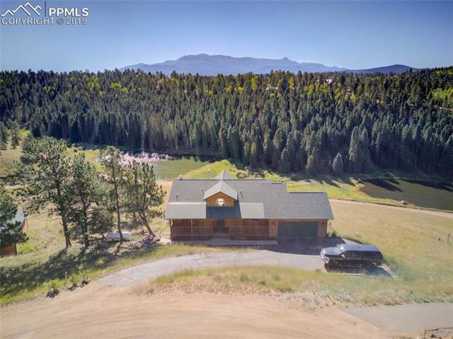 388 Buck Lake Drive, Divide, CO 80814 (#5926031) :: Tommy Daly Home Team