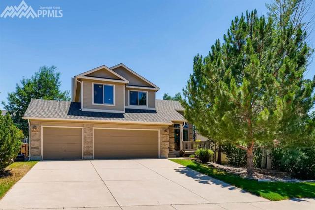 15385 Paddington Circle, Colorado Springs, CO 80921 (#5926953) :: The Treasure Davis Team