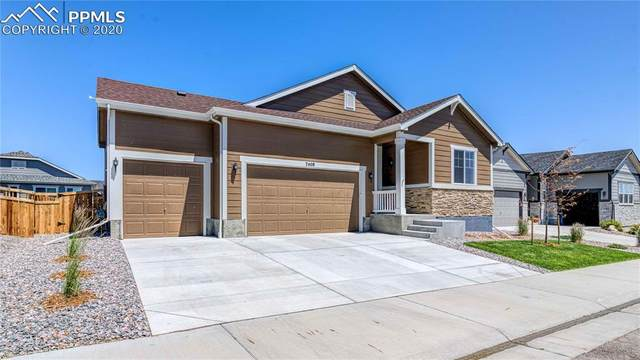 7408 Greenwater Circle, Castle Rock, CO 80108 (#5928989) :: The Treasure Davis Team