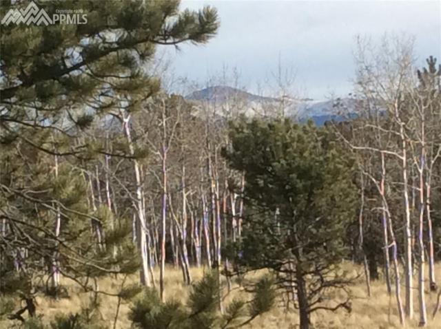 771 Cheyenne Creek Drive, Lake George, CO 80827 (#5929616) :: 8z Real Estate