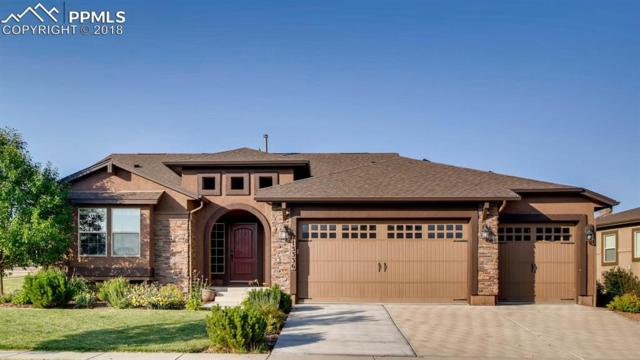 13336 Cedarville Way, Colorado Springs, CO 80921 (#5930530) :: The Hunstiger Team