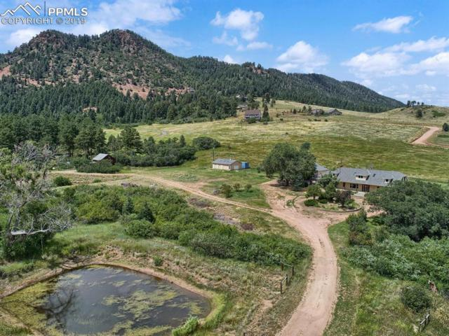 14117 S Perry Park Road, Larkspur, CO 80118 (#5935119) :: Harling Real Estate