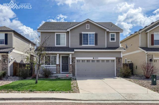 14225 Woodrock Path, Colorado Springs, CO 80921 (#5935713) :: The Daniels Team