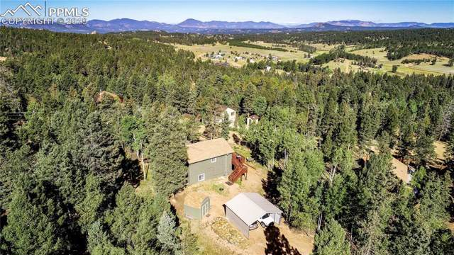 43 Mount Elbert Road, Florissant, CO 80816 (#5935788) :: Tommy Daly Home Team