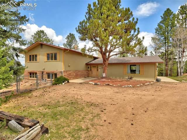 179 Mesa Drive, Florissant, CO 80816 (#5941834) :: Venterra Real Estate LLC