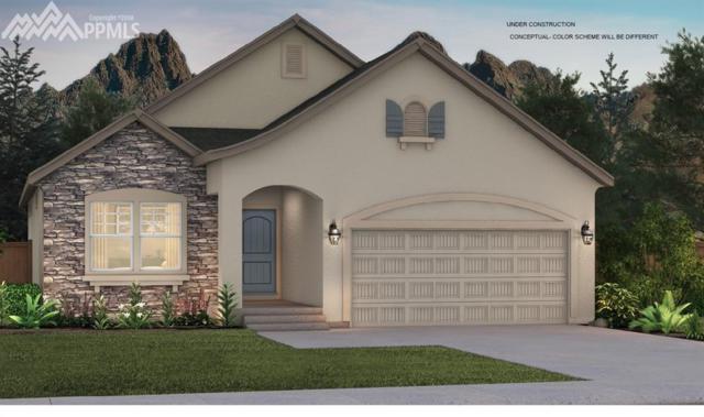 3046 Golden Meadow Way, Colorado Springs, CO 80908 (#5943490) :: Harling Real Estate