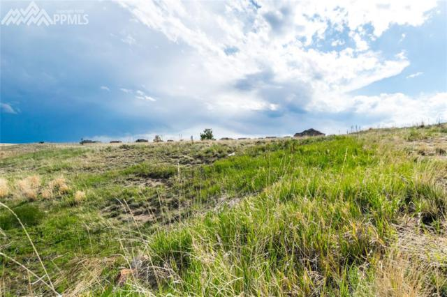 12070 Silver Concho Trail, Elbert, CO 80106 (#5947872) :: 8z Real Estate