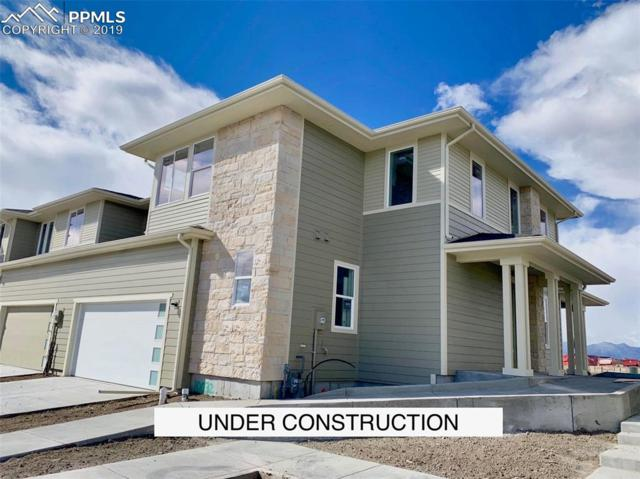 10032 Green Thicket Grove, Colorado Springs, CO 80924 (#5953802) :: Tommy Daly Home Team