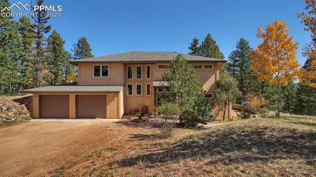 123 Homestead Drive, Woodland Park, CO 80863 (#5954802) :: CC Signature Group