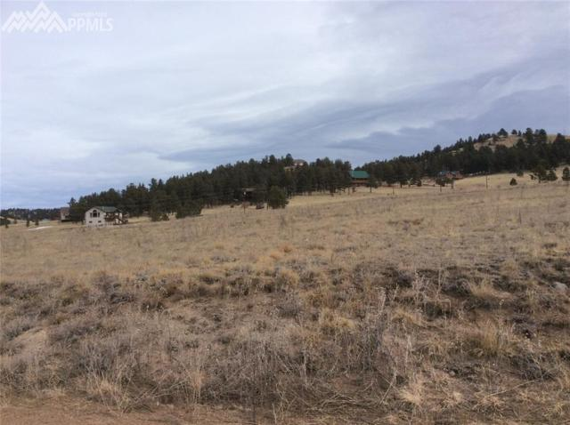 608 High Pasture Road, Florissant, CO 80816 (#5954857) :: The Treasure Davis Team