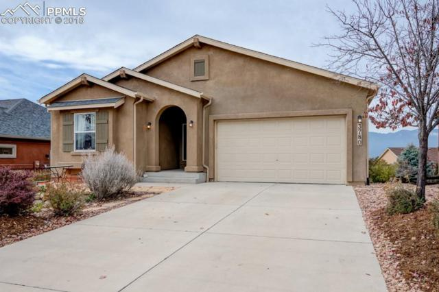 3780 Tail Wind Drive, Colorado Springs, CO 80911 (#5958807) :: Venterra Real Estate LLC