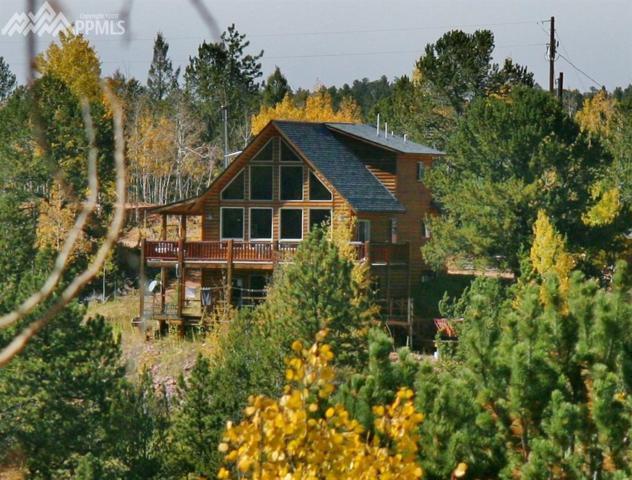 62 Leucite Lane, Divide, CO 80814 (#5959182) :: 8z Real Estate