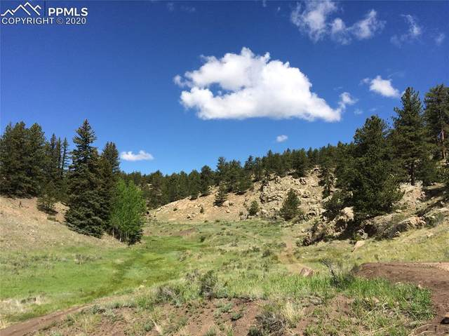 Eagle Springs, Westcliffe, CO 81252 (#5961256) :: Tommy Daly Home Team