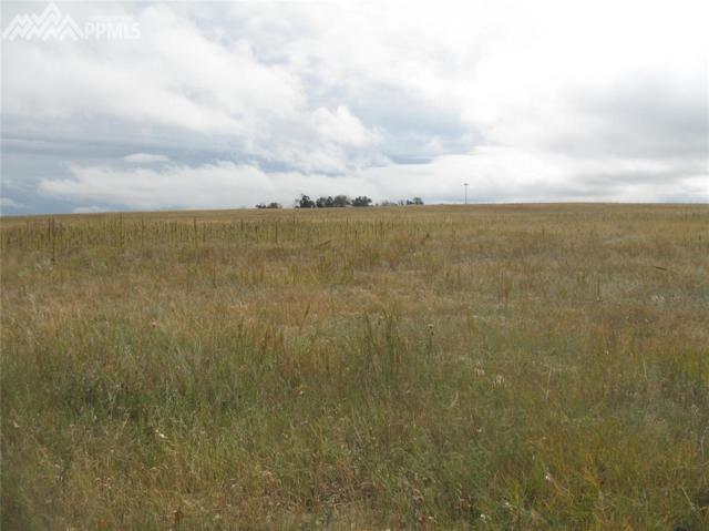 Highway 24 Highway, Peyton, CO 80831 (#5972789) :: 8z Real Estate