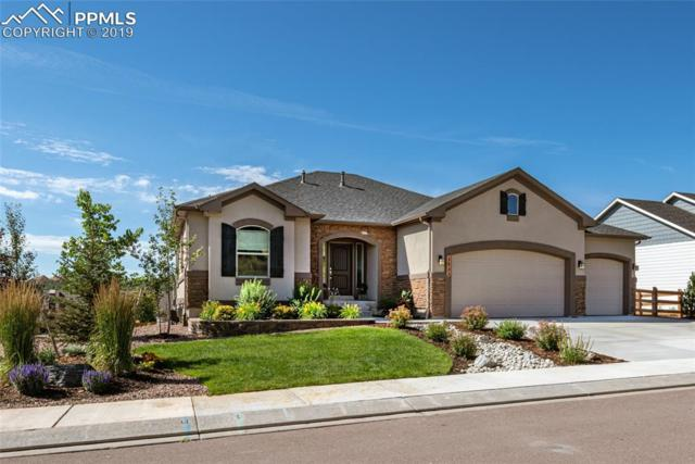 2973 Lakefront Drive, Monument, CO 80132 (#5973065) :: Action Team Realty
