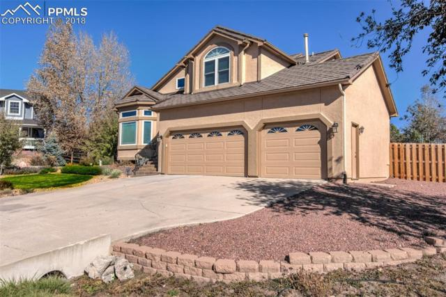 14783 Latrobe Court, Colorado Springs, CO 80921 (#5975203) :: Venterra Real Estate LLC