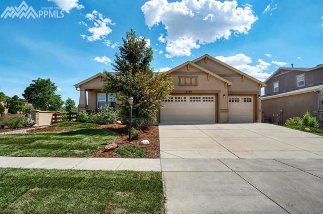 9285 Dome Rock Place, Colorado Springs, CO 80924 (#5976355) :: Jason Daniels & Associates at RE/MAX Millennium