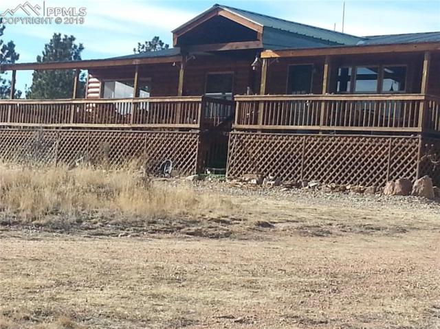 4575 Doe Valley Road, Guffey, CO 80820 (#5976759) :: Perfect Properties powered by HomeTrackR