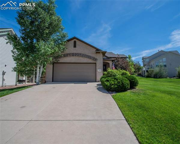 15890 Holbein Drive, Colorado Springs, CO 80921 (#5979996) :: The Daniels Team