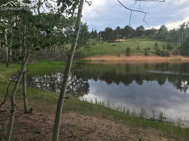 173 Wakanda Trail, Woodland Park, CO 80863 (#5985712) :: Action Team Realty