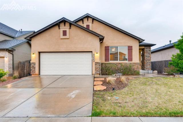 8055 Mount Hayden Drive, Colorado Springs, CO 80924 (#5990488) :: Fisk Team, RE/MAX Properties, Inc.