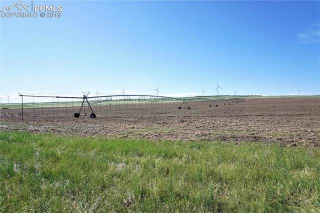 000 Resolis Road, Matheson, CO 80830 (#5990620) :: Fisk Team, RE/MAX Properties, Inc.