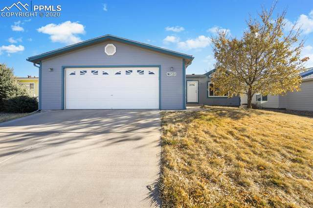 4584 Gray Fox Heights, Colorado Springs, CO 80922 (#5992614) :: Action Team Realty
