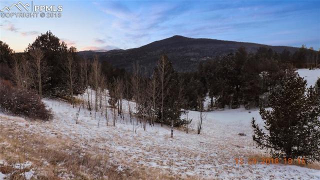 104 Crown Point Circle, Cripple Creek, CO 80813 (#5992919) :: CENTURY 21 Curbow Realty
