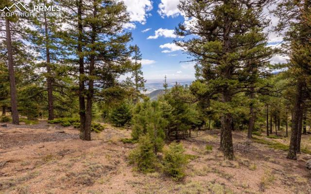 6860 Eagle Mountain Road, Manitou Springs, CO 80829 (#5996695) :: CENTURY 21 Curbow Realty