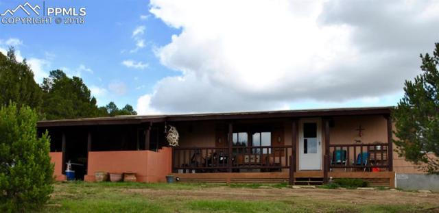 13740 County 53.5 Road, Trinidad, CO 81024 (#6002454) :: Jason Daniels & Associates at RE/MAX Millennium