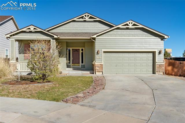 6782 Pinedrops Court, Fountain, CO 80817 (#6002743) :: The Kibler Group