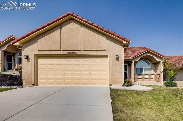 4348 High Mountain Point, Colorado Springs, CO 80917 (#6003169) :: 8z Real Estate