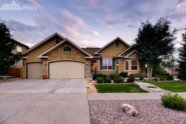 5686 Annie Oakley Way, Colorado Springs, CO 80923 (#6003728) :: Action Team Realty
