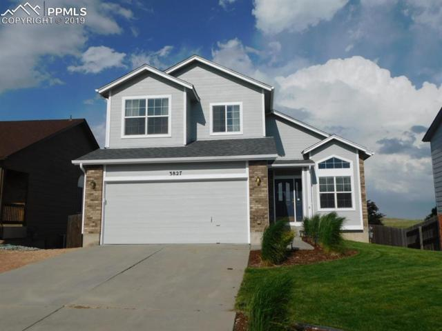 3827 Roan Drive, Colorado Springs, CO 80922 (#6006123) :: HomePopper