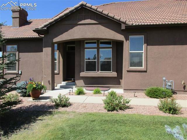 13275 Cake Bread Heights, Colorado Springs, CO 80921 (#6007006) :: Finch & Gable Real Estate Co.