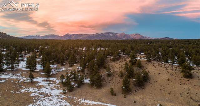 Highway 24, Lake George, CO 80827 (#6008183) :: 8z Real Estate