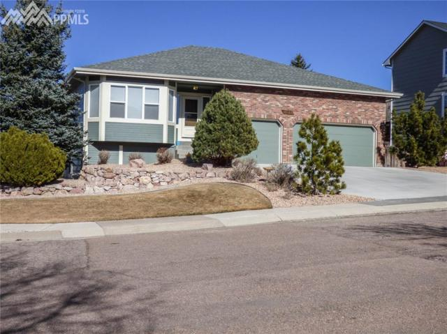 10155 Ottertail Court, Colorado Springs, CO 80920 (#6009966) :: Action Team Realty