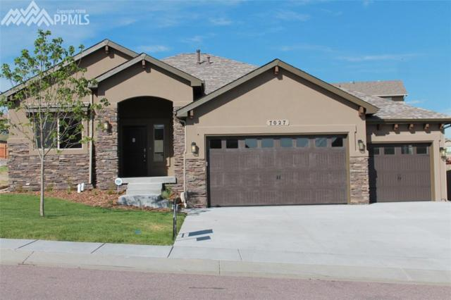 340 Doral Way, Colorado Springs, CO 80921 (#6011140) :: The Daniels Team