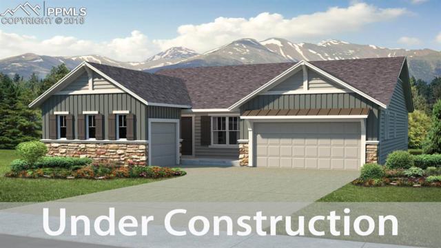 5575 Tonbridge Place, Colorado Springs, CO 80924 (#6011607) :: Harling Real Estate