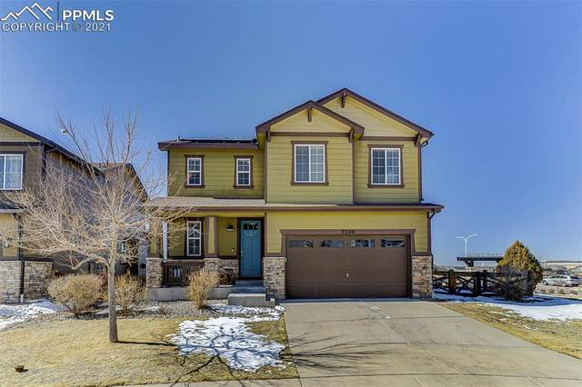 7539 Buckeye Tree Lane, Colorado Springs, CO 80927 (#6012762) :: Realty ONE Group Five Star
