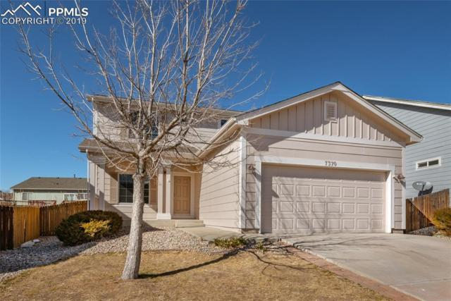 7370 Bentwater Drive, Fountain, CO 80817 (#6015270) :: Action Team Realty