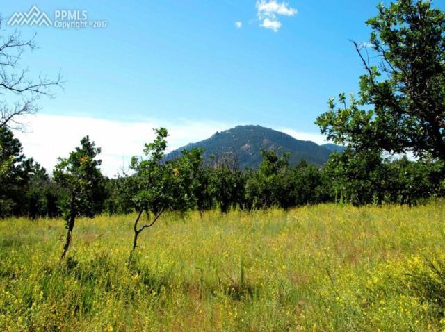2 Oakmoor Heights, Colorado Springs, CO 80906 (#6016033) :: 8z Real Estate