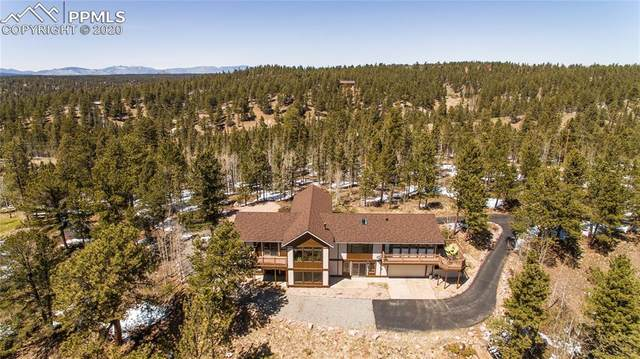 1509 County Road 25, Divide, CO 80814 (#6016070) :: CC Signature Group