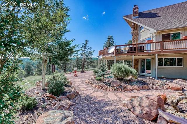 1738 Wildhorn Road, Florissant, CO 80816 (#6016575) :: Tommy Daly Home Team