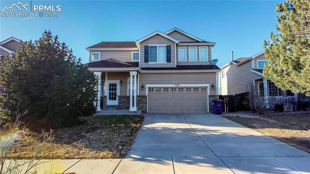 7024 Alcove Springs Drive, Colorado Springs, CO 80923 (#6018039) :: Jason Daniels & Associates at RE/MAX Millennium