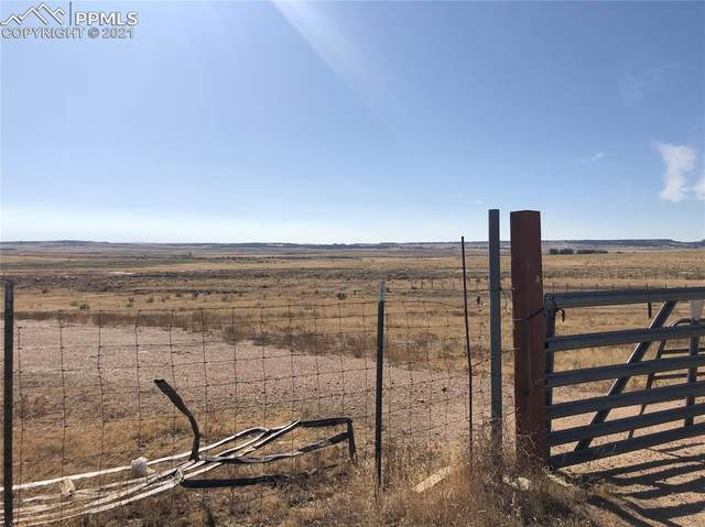 21270 High Stakes View, Fountain, CO 80817 (#6018473) :: Finch & Gable Real Estate Co.