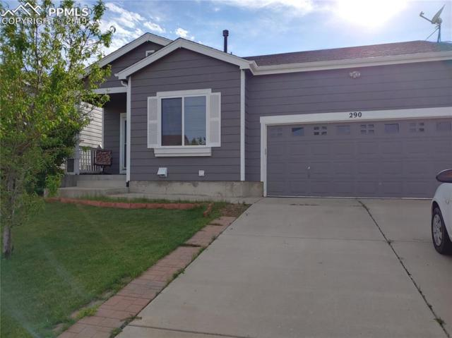 290 Avocet Loop, Colorado Springs, CO 80921 (#6021788) :: Tommy Daly Home Team